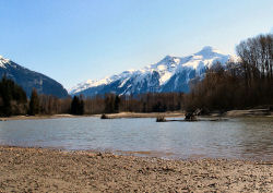 Skeena River Backwaters in the Spring